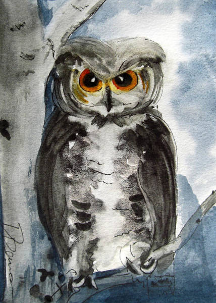 Painting - Rocky Mountain Owl by Dawn Derman