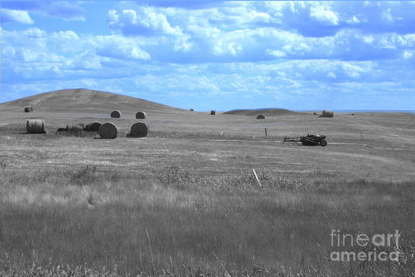 Photograph - Rolling Farmland In Blue Light by Mary Mikawoz