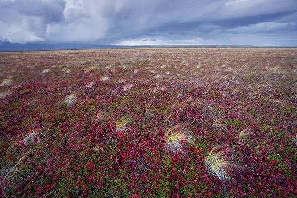 Kamchatka Photograph - Rolling Off Kronotsky Volcano, A Storm by Michael Melford