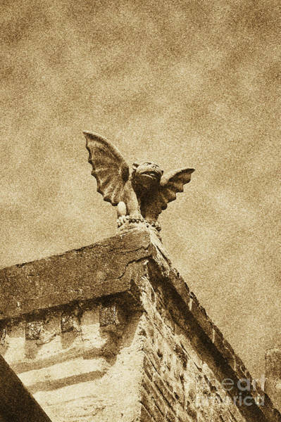 Gargoyle Digital Art - Rooftop Chained Gargoyle Statue Above French Quarter New Orleans Vintage Digital Art by Shawn O'Brien