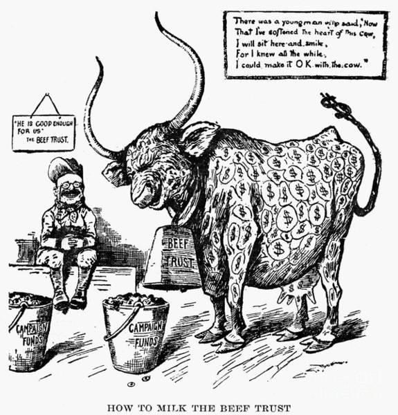 Photograph - Roosevelt Cartoon, 1904 by Granger