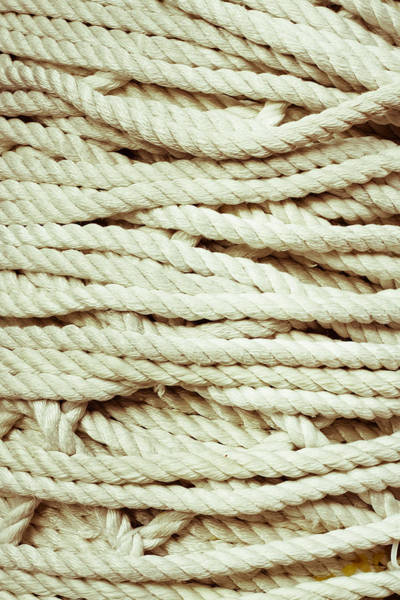 Wall Art - Photograph - Rope by Tom Gowanlock