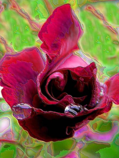 Rose Contours Art Print