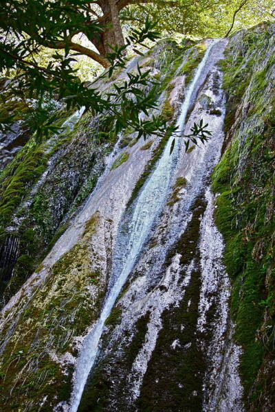 Photograph - Rose Valley Falls by Diana Hatcher