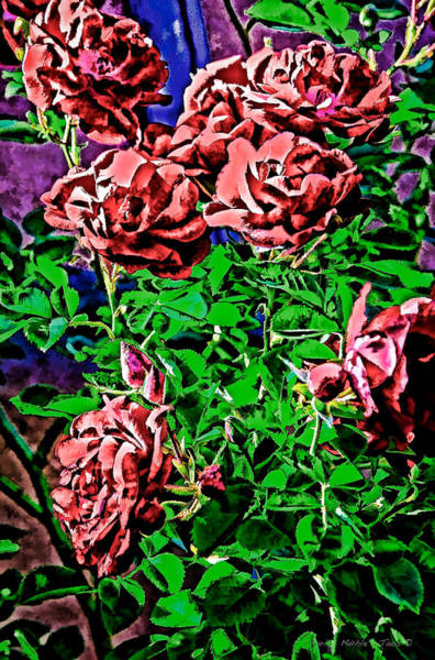 Digital Art - Roses by Charles Muhle