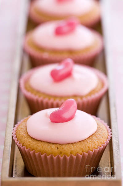 Fairy Cake Wall Art - Photograph - Row Of Pink Cupcakes by Ruth Black