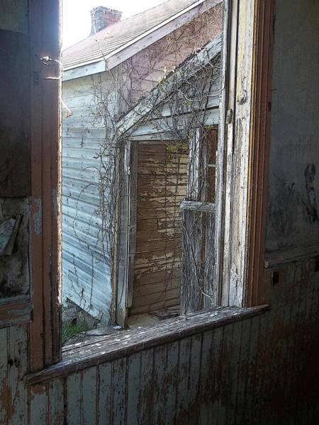 Photograph - Rural Decay 1 by Anne Cameron Cutri