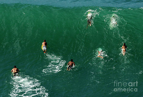 Surfboard Fence Photograph - Rush Hour Traffic by Bob Christopher