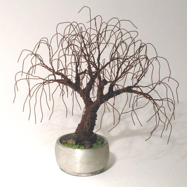 Jade Mixed Media - Rusted Bonsai - Wire Tree by Sal Villano