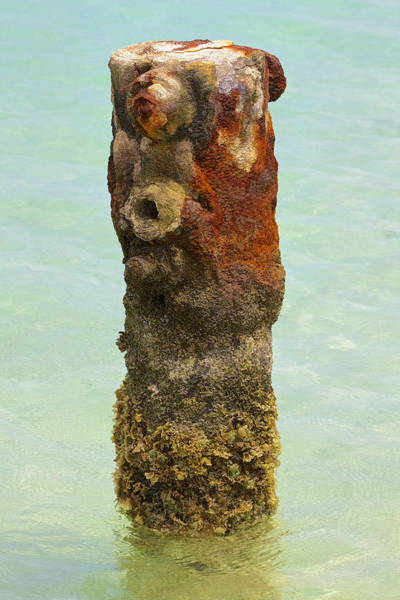 Rusted Dock Pier Of The Caribbean Vii Art Print