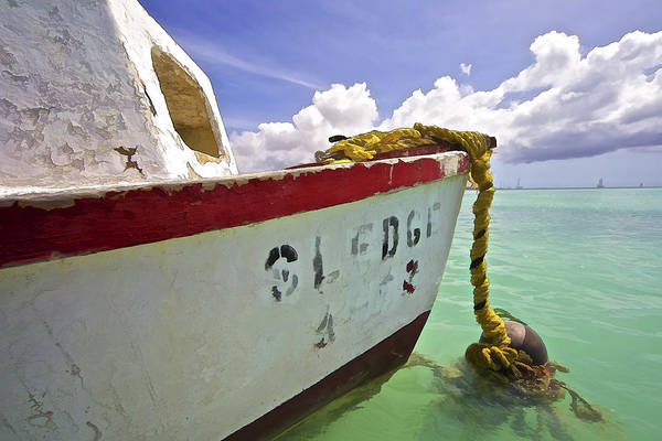 Photograph - Rustic Fishing Boat Sledge Of Aruba by David Letts