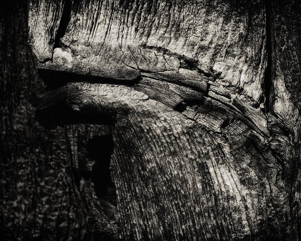 Shingles Photograph - Rustic Soul by Susan Capuano