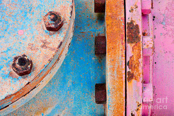 Photograph - Rusty Bolts by Ari Salmela