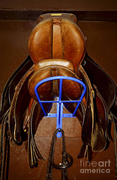 Rack Photograph - Saddles by Elena Elisseeva