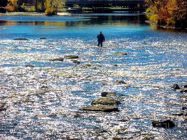 Napanee Photograph - Salmon Wader by John Herzog