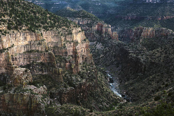 Photograph - Salt River Canyon by Dave Dilli