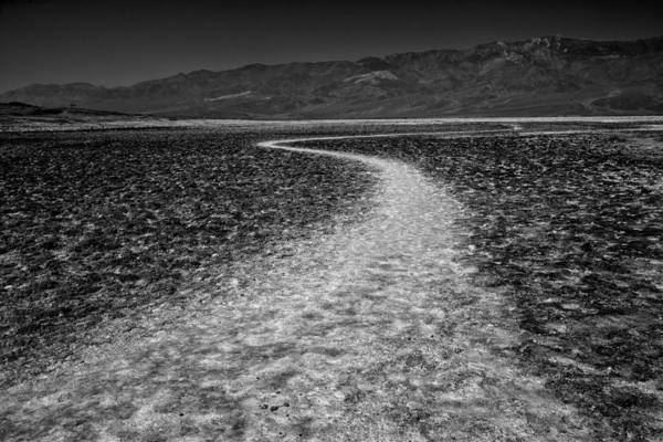 Wall Art - Photograph - Salt Road by Matt  Trimble