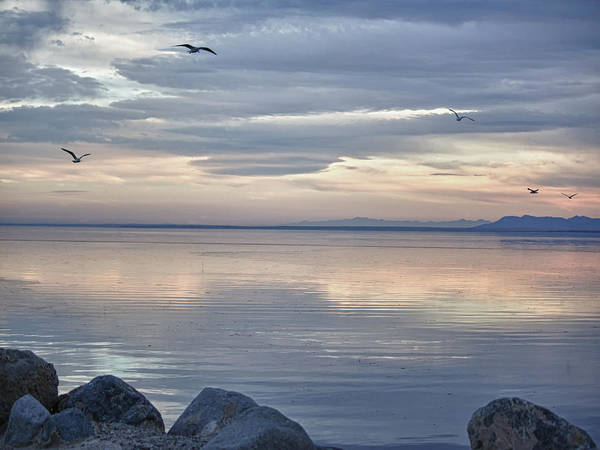Sonny Bono Wall Art - Photograph - Salton Sea Sunset by Linda Dunn