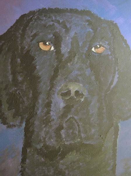 Black Great Dane Painting - Sampson by Monica Maher