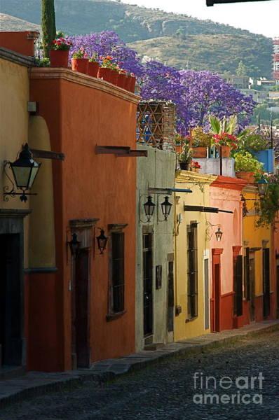 Wall Art - Photograph - San Miguel De Allende Street by Nicola Fiscarelli