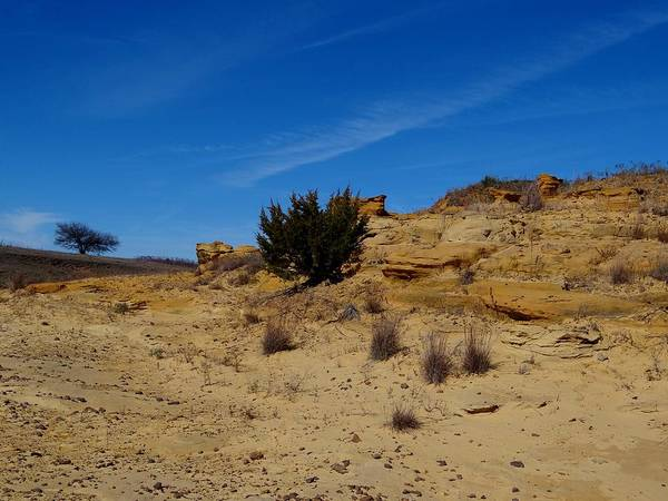 Photograph - Sand Canyon by Keith Stokes