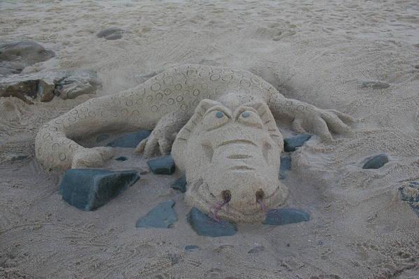 Wall Art - Sculpture - Sand Dragon by Karen Elzinga