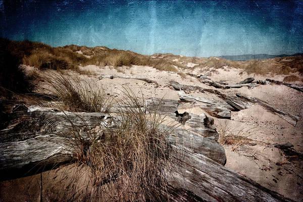 Oregon Sand Dunes Photograph - Sand Dunes by Bonnie Bruno