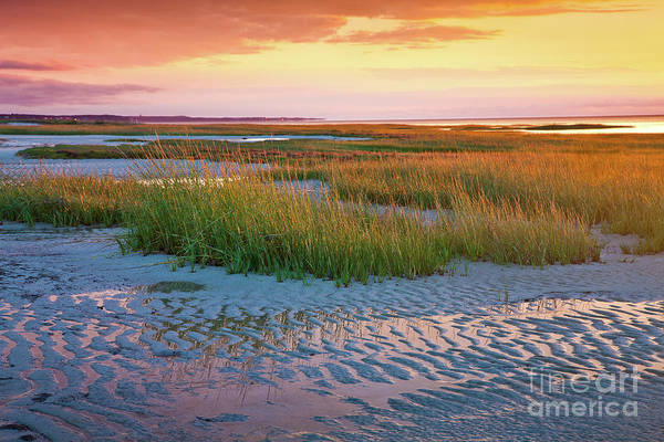 Photograph - Sand Ripples by Susan Cole Kelly