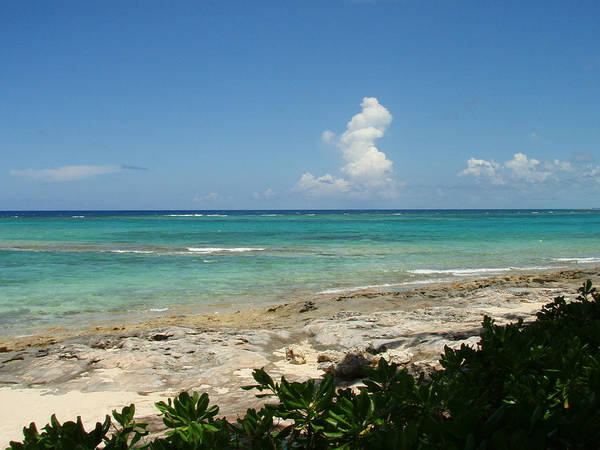 Photograph - Sandals Cay by Kimberly Perry
