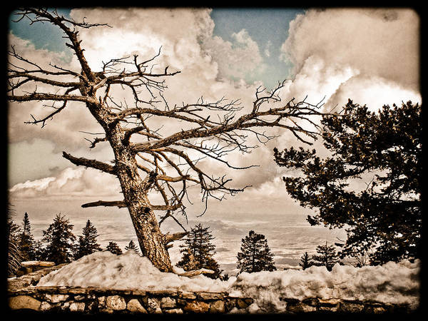 Photograph - Albuquerque, New Mexico - Sandia Crest by Mark Forte