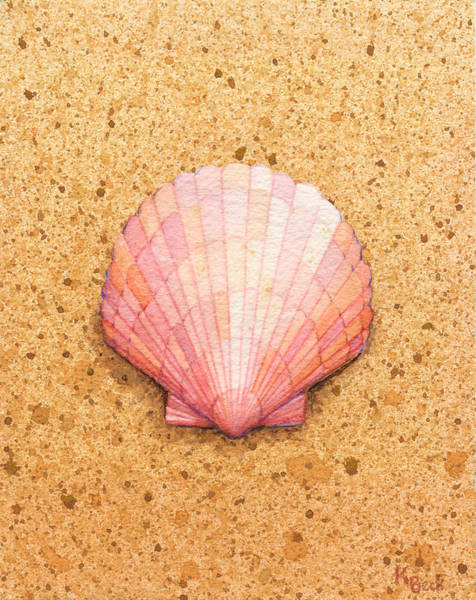 Wall Art - Painting - Scallop Shell by Katherine Young-Beck