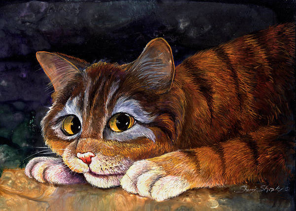 Painting - Scaredy Cat by Sherry Shipley