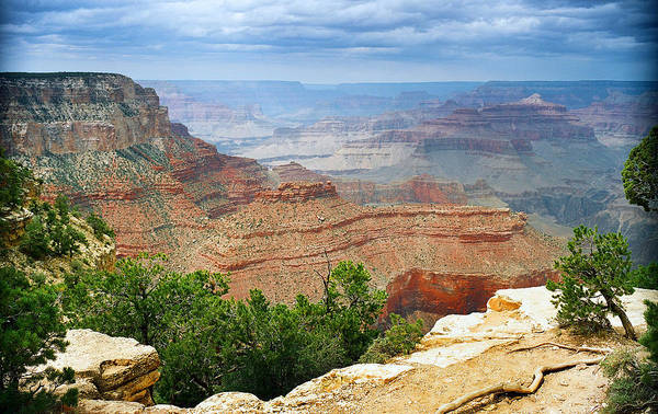 Photograph - Scenic Grand Canyon 22 by M K Miller