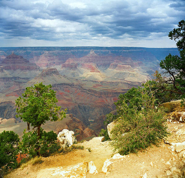 Photograph - Scenic Grand Canyon 24 by M K Miller