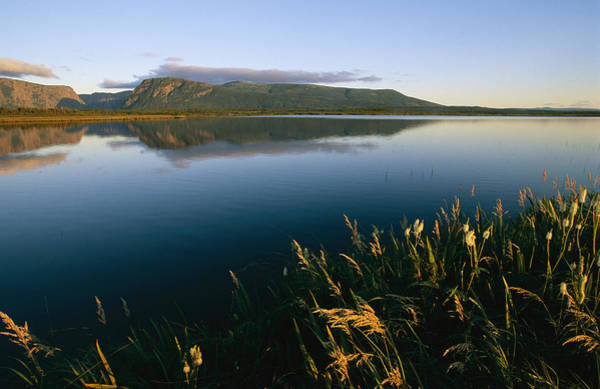 Gros Morne Photograph - Scenic View Of A Large Pond And Hills by Michael S. Lewis