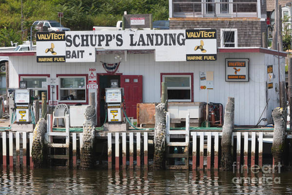Photograph - Schupp's Landing I by Clarence Holmes