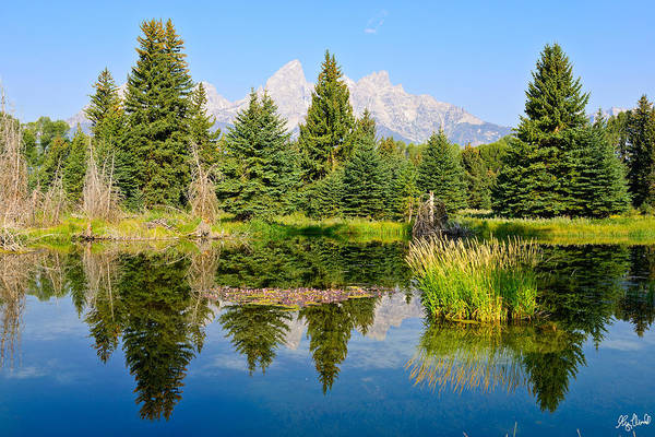 Photograph - Schwabacher Landing Still Waters by Greg Norrell