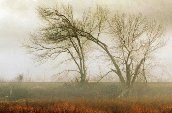 Photograph - Scott In Fog by Frank Winters