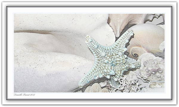 Photograph - Sea Foam In Pastels by Danielle  Parent