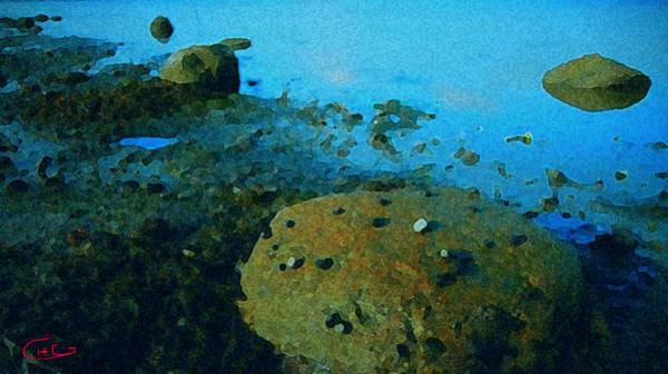 Photograph - Sea Life  by Colette V Hera  Guggenheim