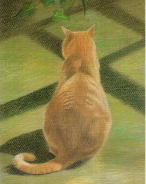 Orange Tabby Drawing - Seated Orange Tabby Cat by Phyllis Tarlow