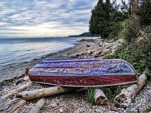 Queen Charlotte Sound Wall Art - Photograph - Seaworthy by Diana Cox