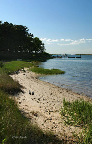Photograph - Secluded Beach Marthas Vineyard  by Michelle Constantine