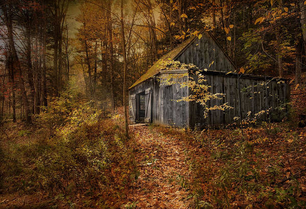 Photograph - Secluded by Robin-Lee Vieira