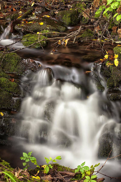 Photograph - Secret Falls by Sara Hudock