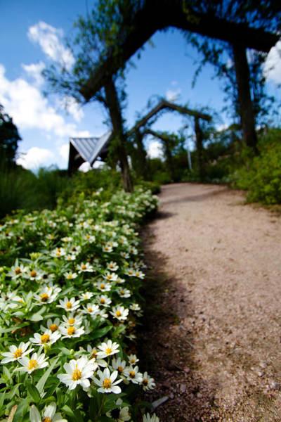 Photograph - Secret Path by Jason Smith