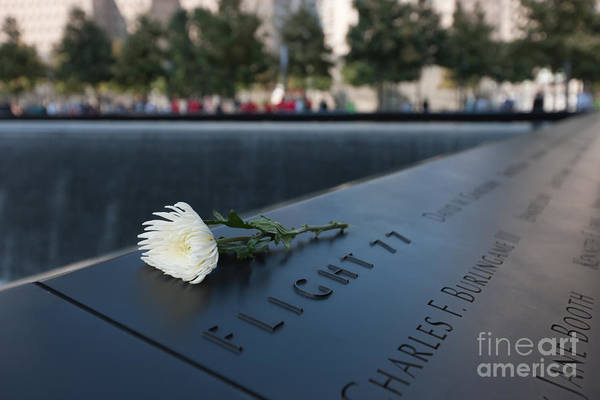 Photograph - September 11 Memorial Flower by Clarence Holmes