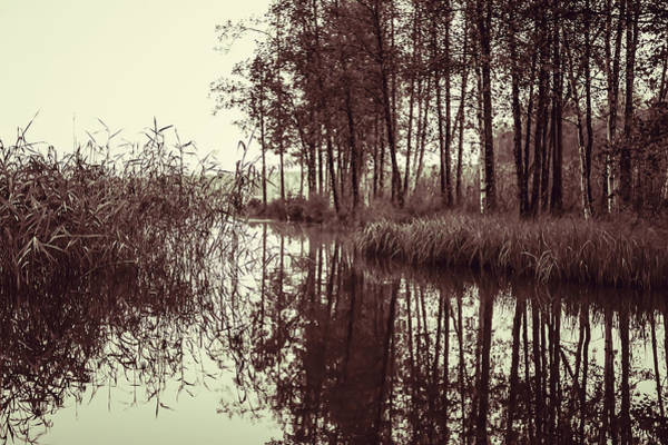 Photograph - September Morning by Ari Salmela