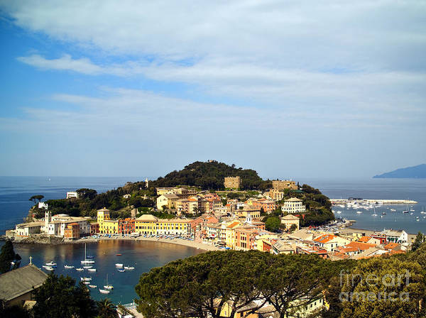Sestri Levante Photograph - Sestri Levante, Italy by David Buffington
