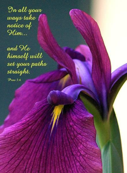 Proverb Photograph - Set Paths Straight by Deborah  Crew-Johnson